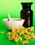 Flower Remedies